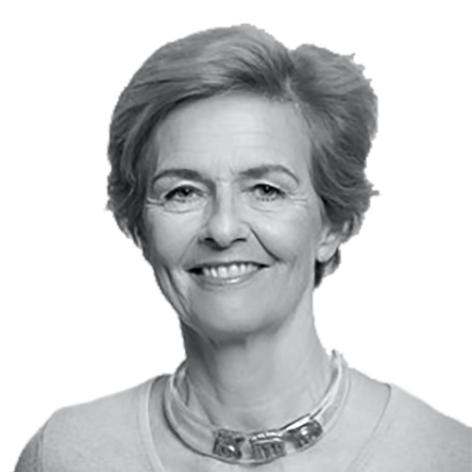 Dominique Potier Bassoulet